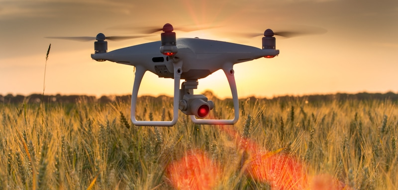 drone flies on wheat field shows infra red laser coming from it