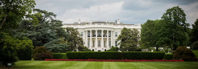 the white house garden view