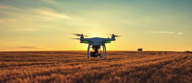 drone hovers in wheat field