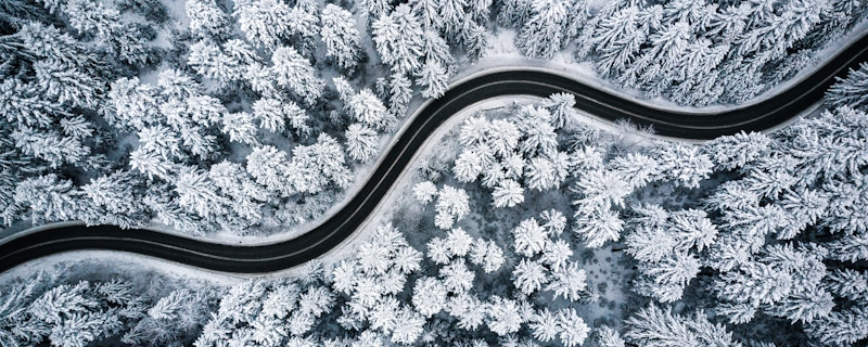 drone image of snowed forrest