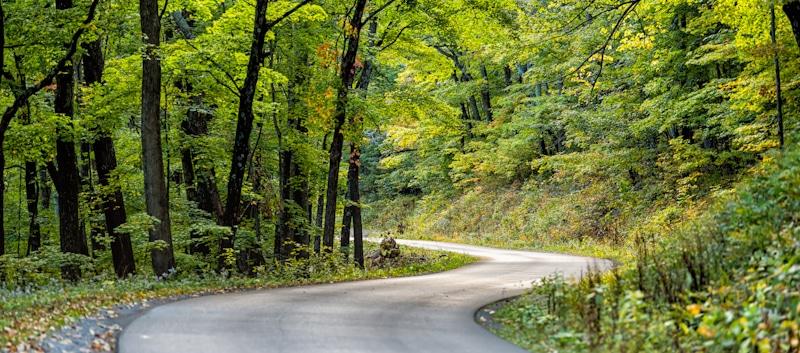 paved road to Spruce Knob lake