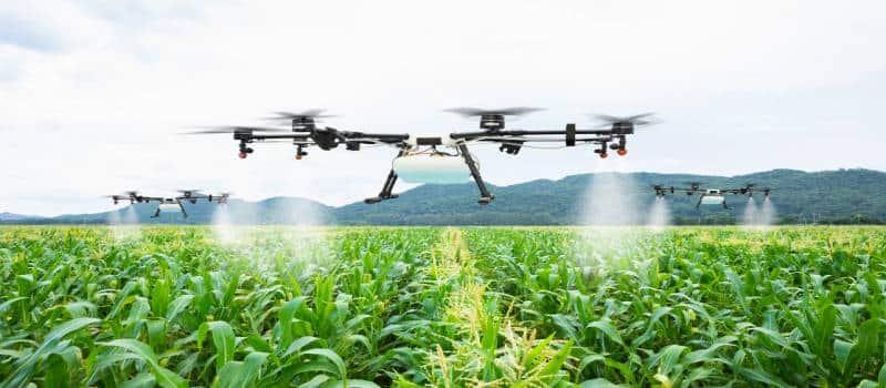 dronefertilizingfield