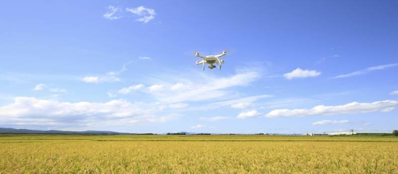 droneflyingintheblueskyoverfield